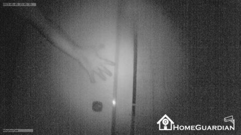赤外線ライトのスナップ画像