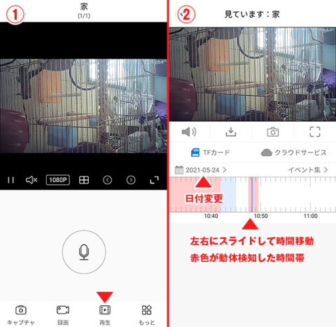 動画の再生